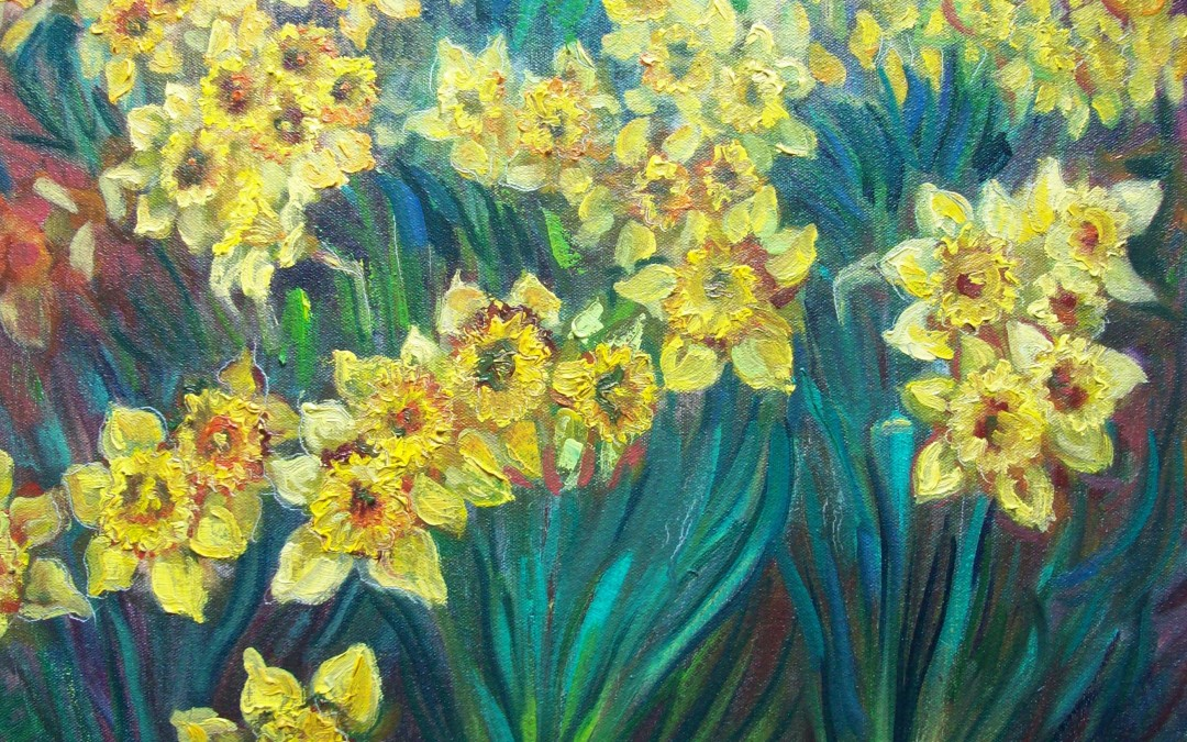Daffodils (For Sale)