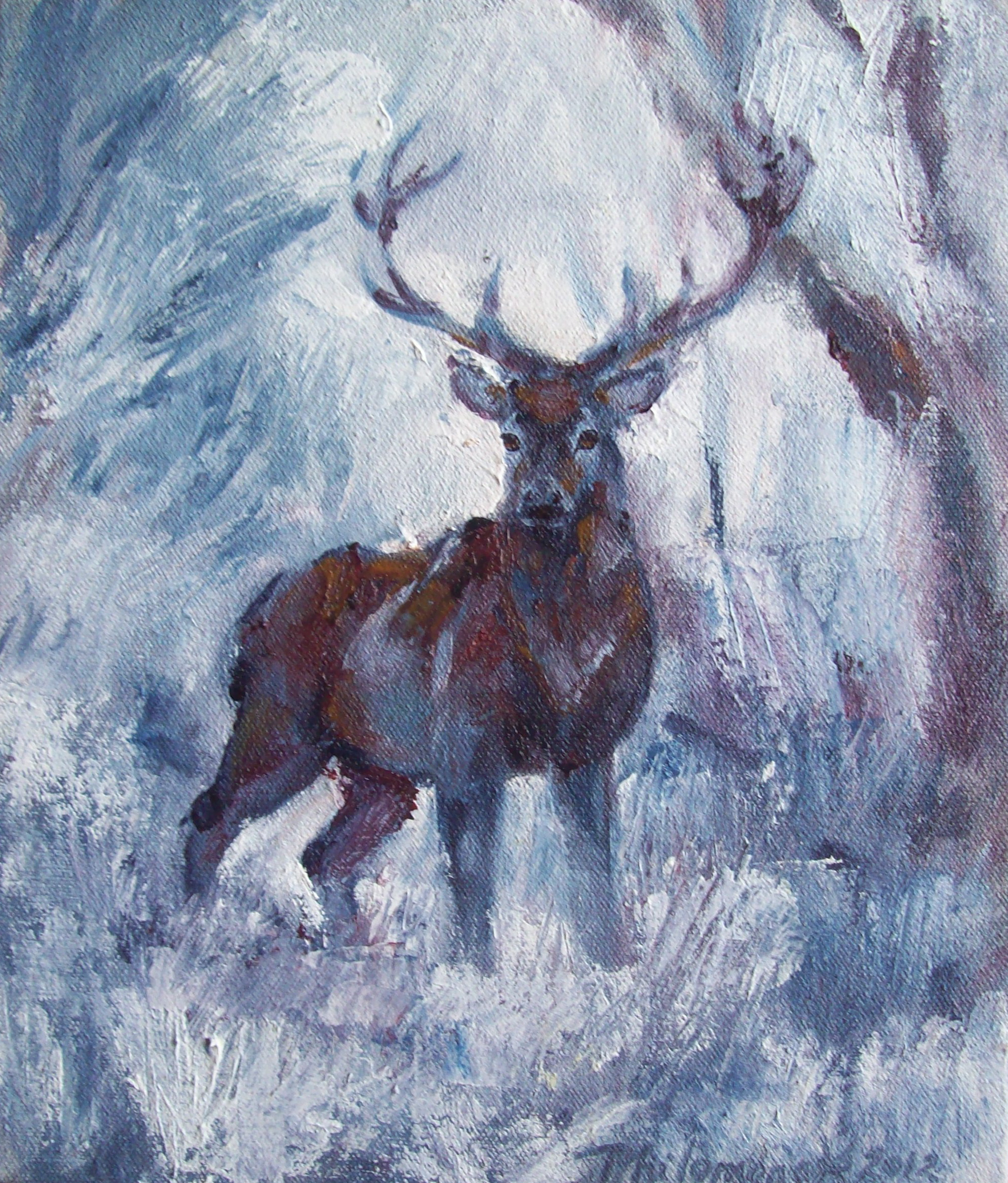 Phantom Stag (Greetings Cards)