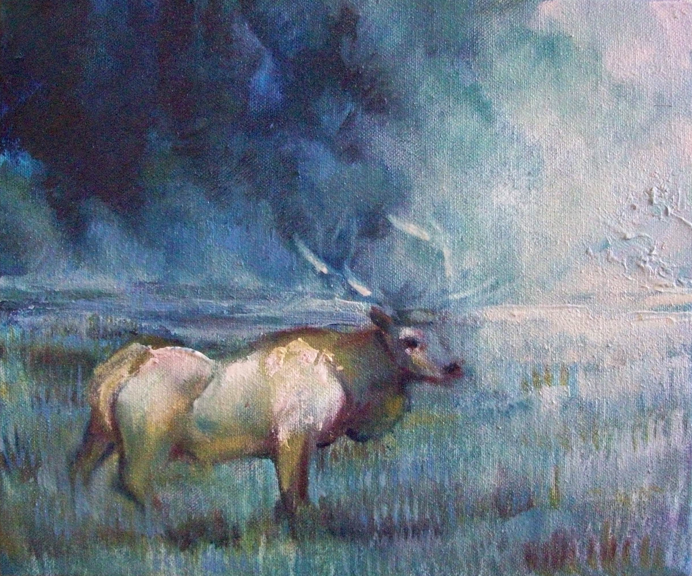 Twilight Stag (Greetings Cards)
